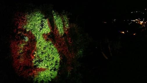 Projeccions sobre arbres ©Xavi Bové